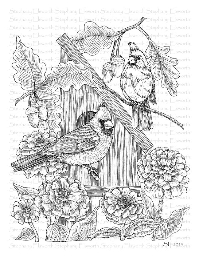 Cardinals and Zinnias wm JPG